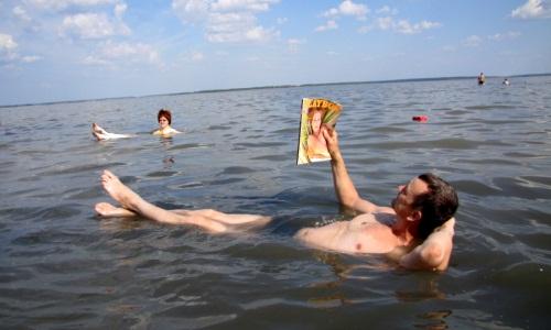 Мертвое море Курганской области