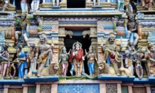 Интересное путешествие в Шри-Ланку
