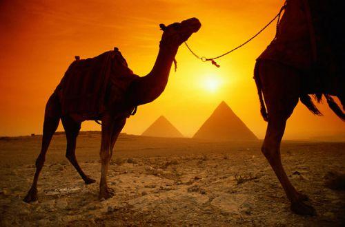 Полезные советы тем, кто хочет отдохнуть в Египте