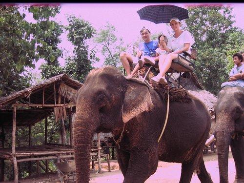Катание на слонах в Таиланде