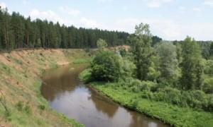 """Национальный парк """"Бузулукский Бор"""""""