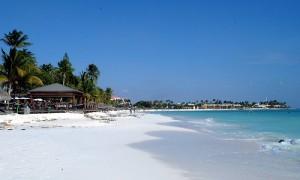 Удивительный мир Багамских островов